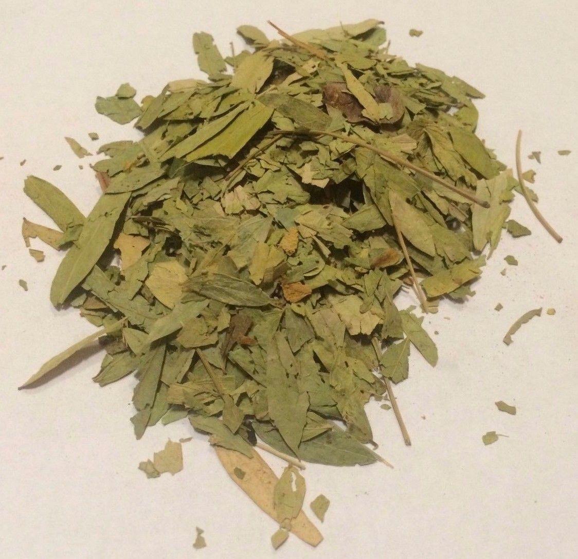 1 oz. Senna Leaf (Senna alexandrina) Organic & Kosher India – Our ...